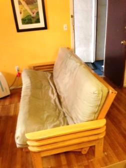 Futon Couch For Sale - $200