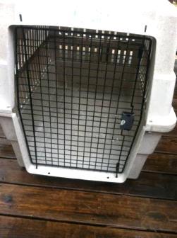 Dog crate - $50
