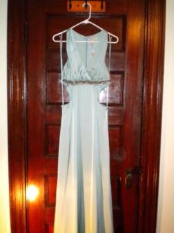 unworn gorgeous long bcbg prom/cocktail dress sz 12 - $40