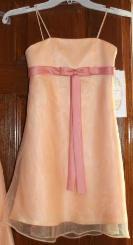 New Alfred Angelo Girls Peach Dress - $40