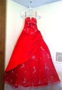 Red Precious Formal Dress - $115